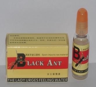Black Ant Feeling Water